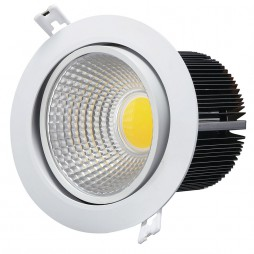 Down-Light-20w-a