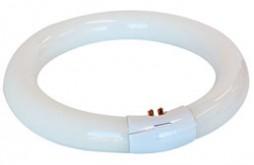 Circular Tube